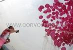 CORVOS_00013610-003